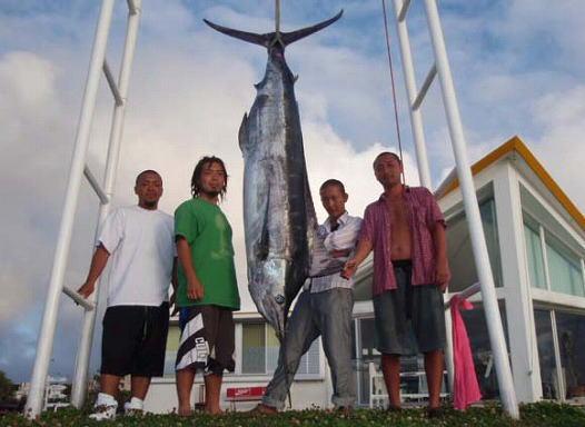 沖縄のトローリンングで釣れたカジキ