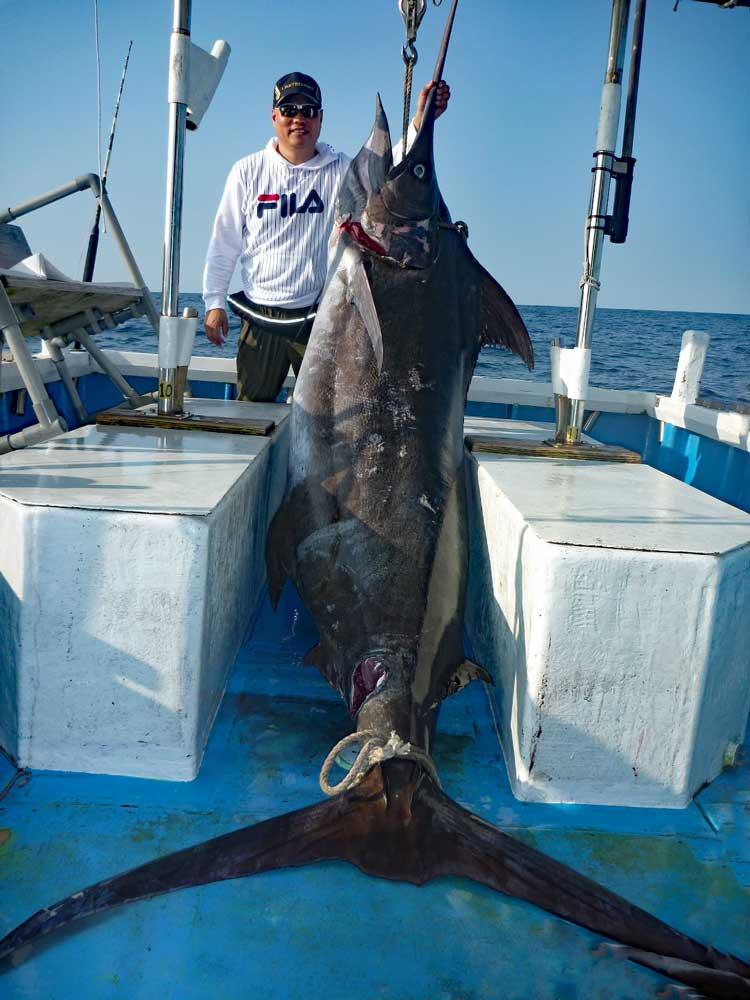 クレーンズ沖縄、鶴丸のトローリングで釣れたカジキブルーマーリン(和名クロカジキ)全長3.3m 胴回り1.6m 推定重量200kg、船長は鶴巻守