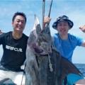 沖縄でお盆に上がったカジキ