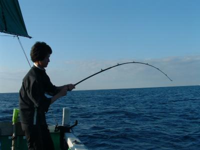 魚を釣り上げ中
