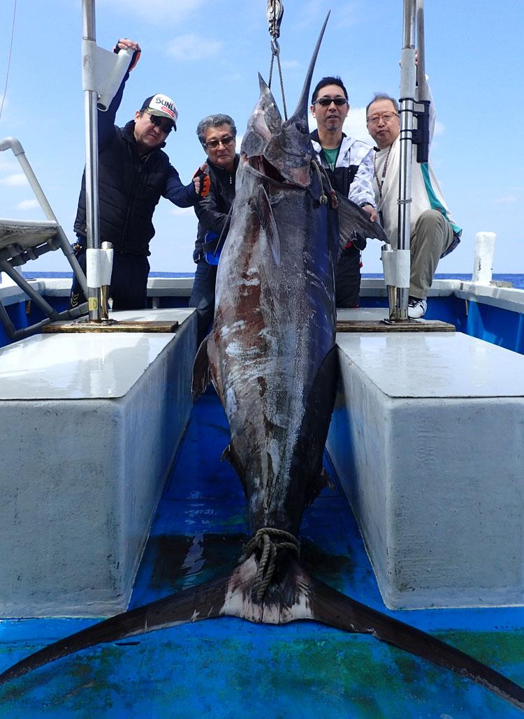 2016平成28年3月12日に釣り上げた130kgのカジキと4人の男
