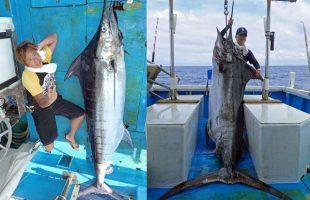 夫婦で釣り上げた150kgと100kgのカジキ