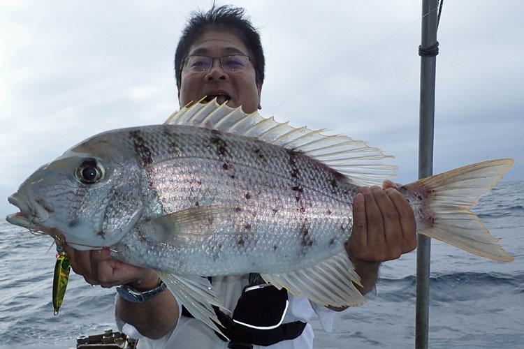 インチクで釣れたシルイユ(サザナミダイ)