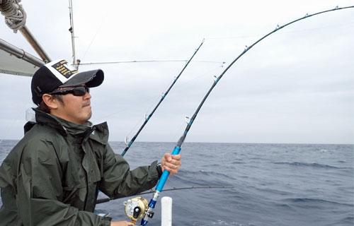 ライトトローリングで魚釣り中