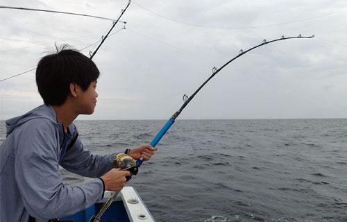 カツオを釣っている船上