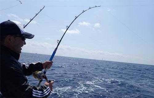 カツオ釣り中の男性