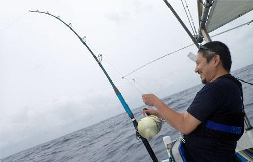 サワラ釣り中