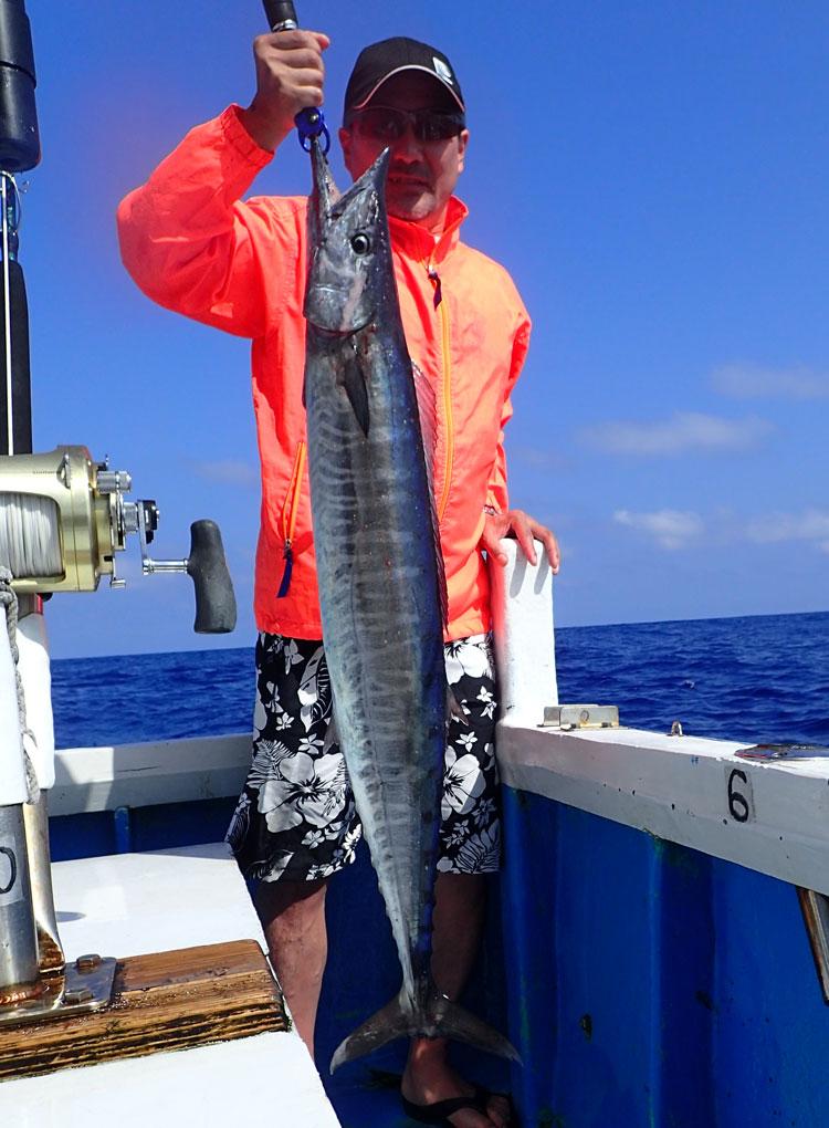 2017年に初めて釣れたカマスサワラ