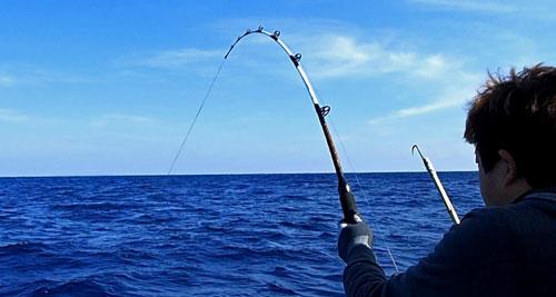 バショウカジキを釣っている男性