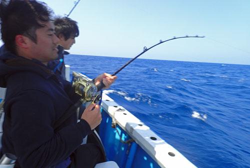 スマガツオを釣っている男