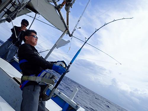 カジキを釣っている60才アングラー