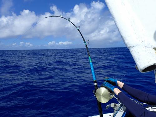 カジキ釣り中ロッド