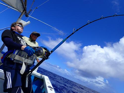 カジキ釣っている息子と父