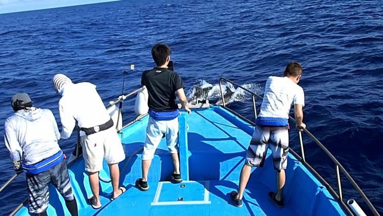 イルカを見ている四人の男性