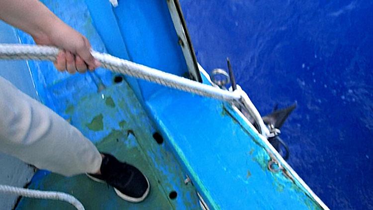 16才の少女が自ら釣り上げたカジキの引き上げ