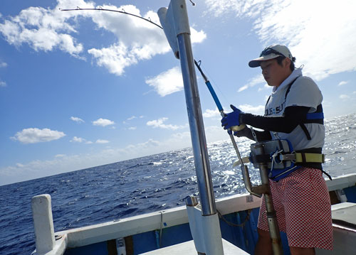 セイルフィッシュfishing