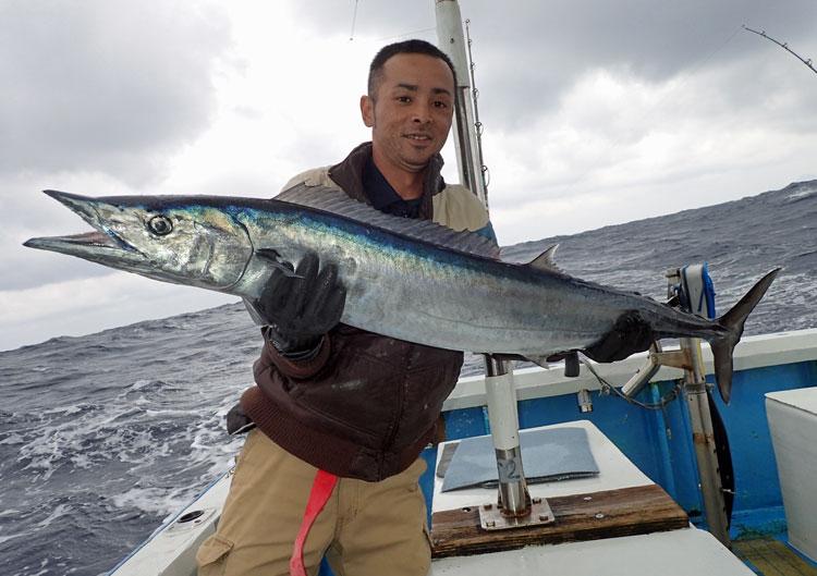 平成31年の初釣りでカマスサワラ!トローリングにて