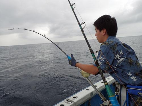 シイラ釣り