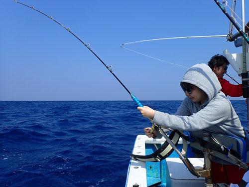 カツオ釣りトローリング