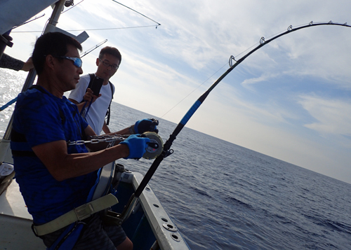 marlin fishing in okinawa