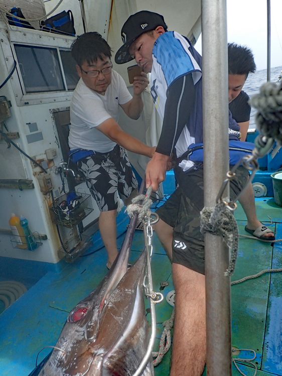 カジキを船に引き上げている3人の男