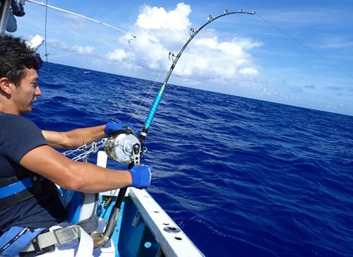 カジキを釣っている22歳の男