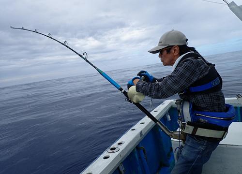 カジキを釣っている父親