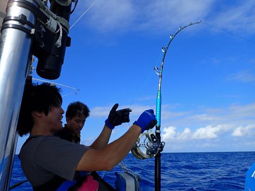 マーリンを釣っている大学生
