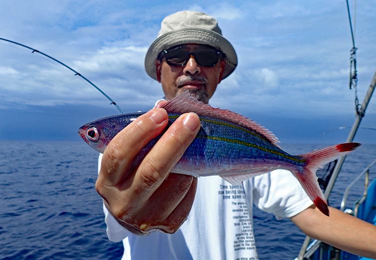 沖縄県魚のグルクン