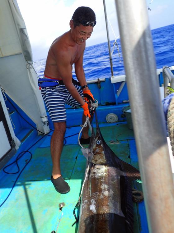 カジキを船に引き上げた男性