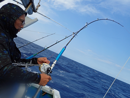 wahoo fishing in okinawa japan
