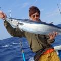 トローリングで釣り上げたカマスサワラ
