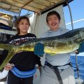 mahimahi fishing in okinawa japan