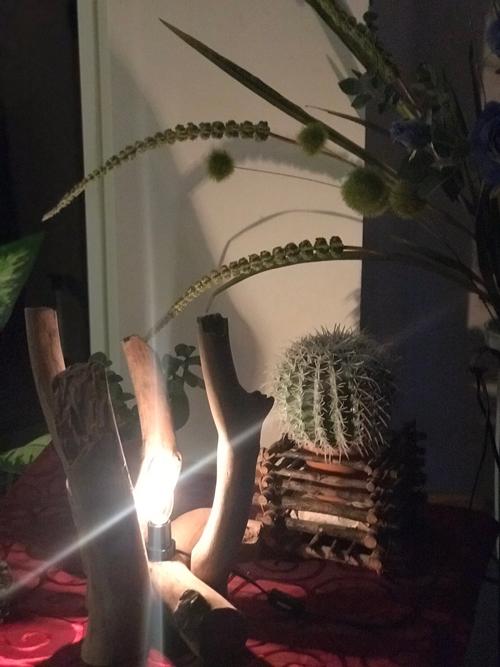 流木アート照明ライト夜2