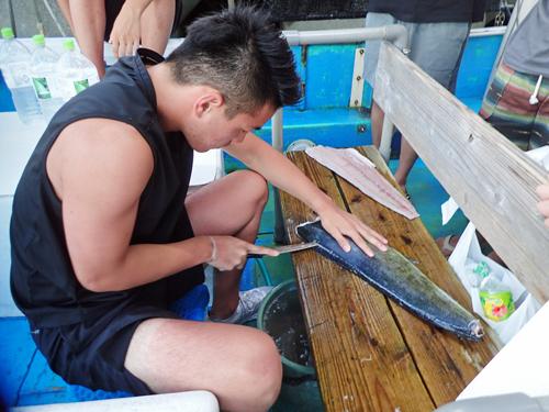 自ら釣り上げたシイラを捌いている大学生