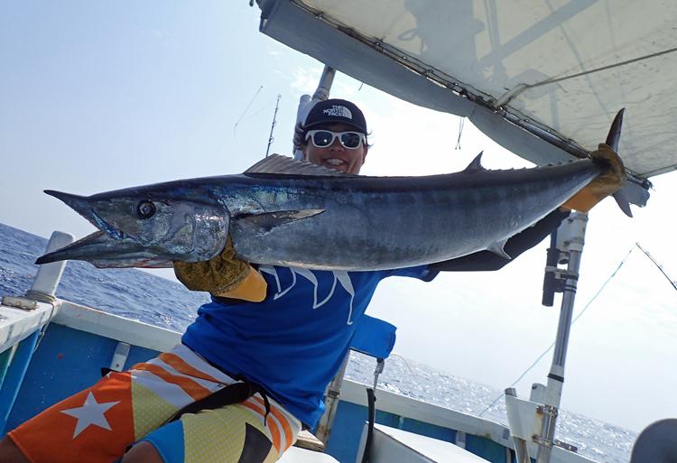 トローリングで釣れたカマスサワラ