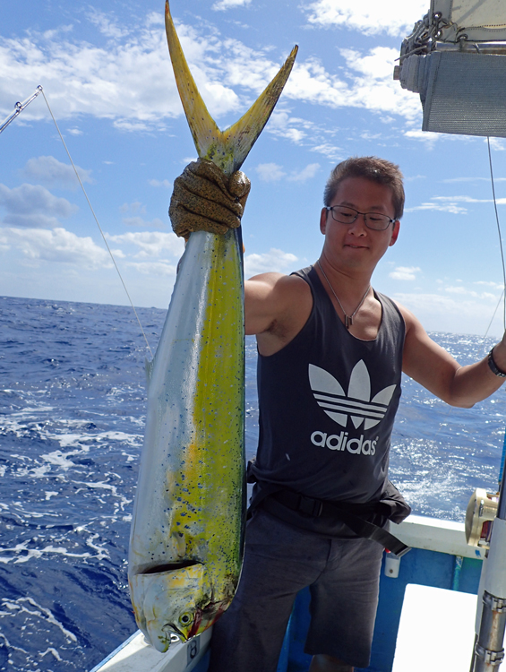 トローリングでシイラを釣ったアメリカ人