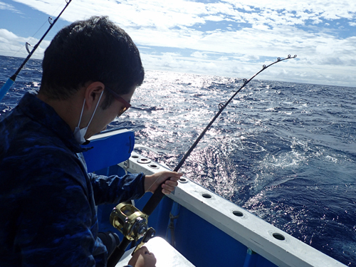 トローリングでカツオを釣っている男性