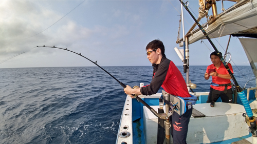 カツオを釣っている若い男性