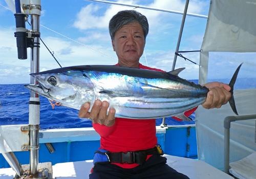 bonito fishing in okinawa japan