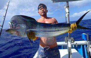 クレーンズ沖縄、鶴丸のトローリングで釣れた雄のシイラ