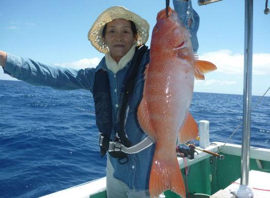 高級魚アカジン