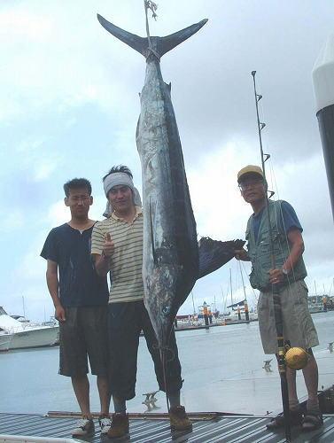 マカジキ60kg(ストライプドマーリン)