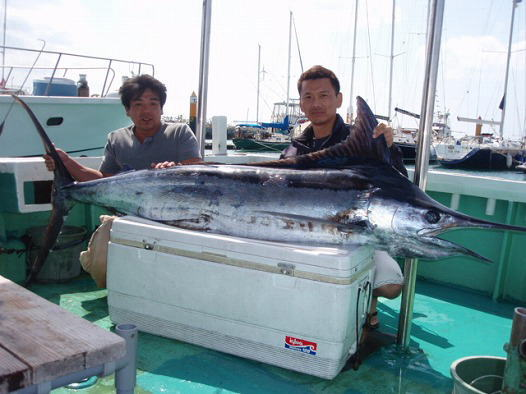 クロカワカジキ(ブルーマーリン)トローリングにて/クレーンズ沖縄2008(平成21年)5月2日