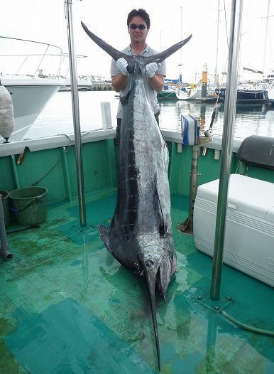 クロカジキ(ブルーマーリン)90kg/クレーンズ沖縄