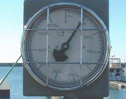 宜野湾マリーナで検量