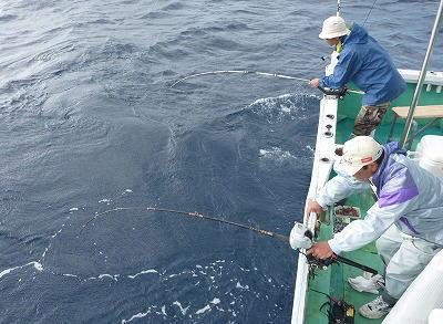 魚を釣っていると男性
